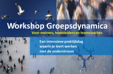 workshop groepsdynamica teamchange