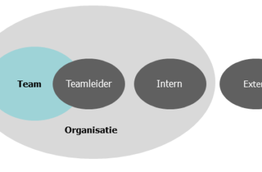Figuur: de drie posities van een teamcoach